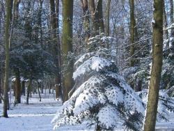 hiver-a-rocques-12