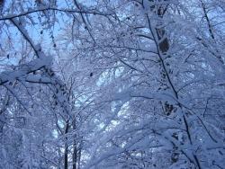 hiver-a-rocques-16