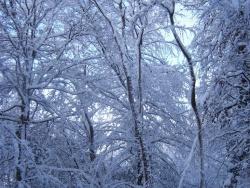 hiver-a-rocques-15