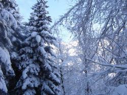 hiver-a-rocques-17