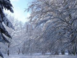 hiver-a-rocques-19
