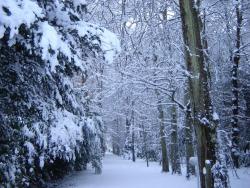 hiver-a-rocques-6