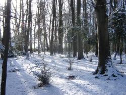 hiver-a-rocques-7